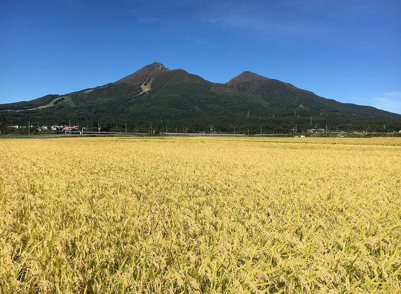磐梯山宝の山