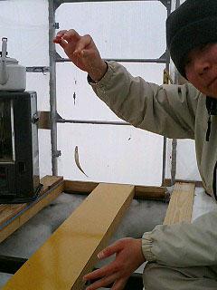 小野川湖ワカサギ釣り体験