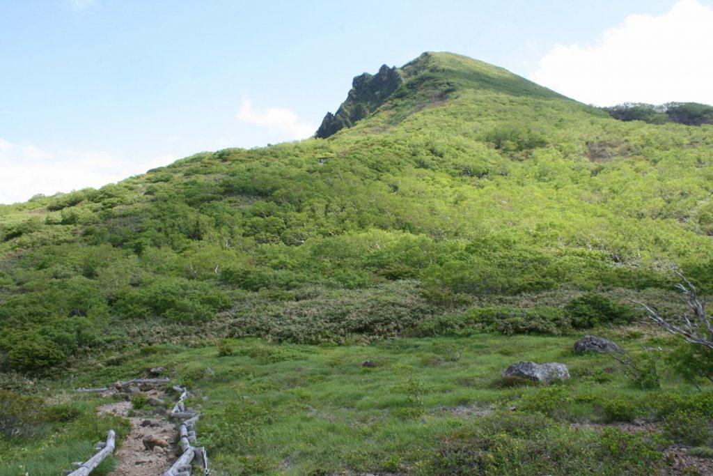 磐梯山とお花畑