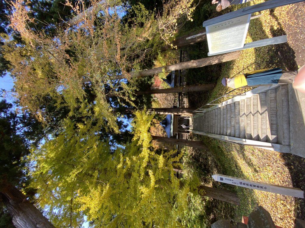 新熊野神社御神体