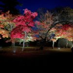 鶴ヶ城紅葉ライトアップ