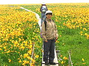 雄国沼の花畑