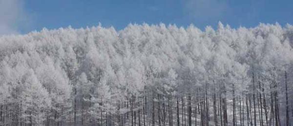 裏磐梯の冬景色