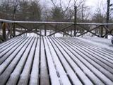 050422雪.jpg