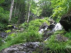 デコ平湿原→早稲沢トレッキング 布滝