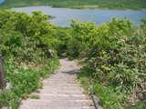 この階段を歩きます