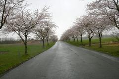 猪苗代観音寺川町営牧場