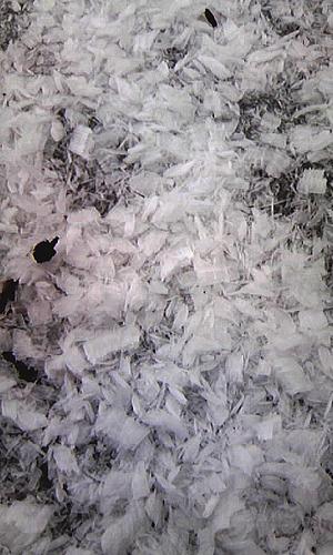 桧原湖の霧氷1