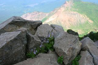 磐梯山 バンダイクワガタ