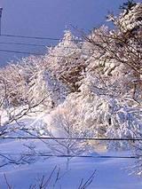 050224吹雪後1.jpg