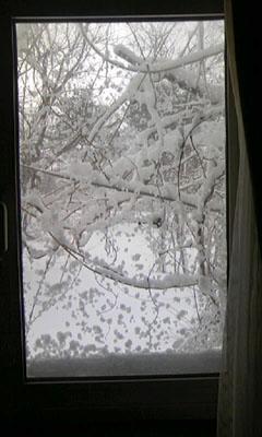 裏磐梯五色沼「窓に雪」.