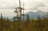 デコ平湿原眺望110615