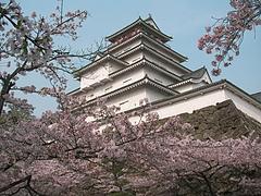 08-04-22鶴ヶ城の桜