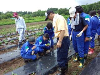 五色沼ガーデンファーム 農業体験学習