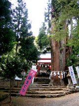 磐椅神社と大杉