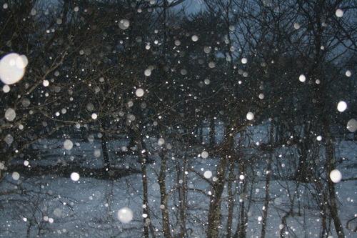 五色沼 雪