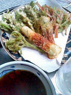 春の香り「うどの芽の天ぷら」110510