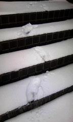 五色沼に雪が降りました