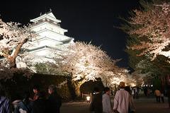 鶴ヶ城桜ライトアップ090419_1