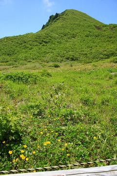磐梯山 お花畑