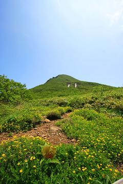 磐梯山お花畑